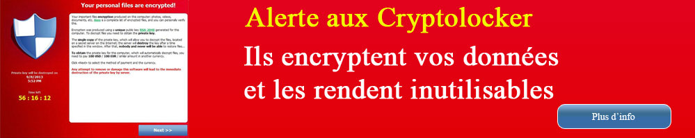 Les cryptolockers